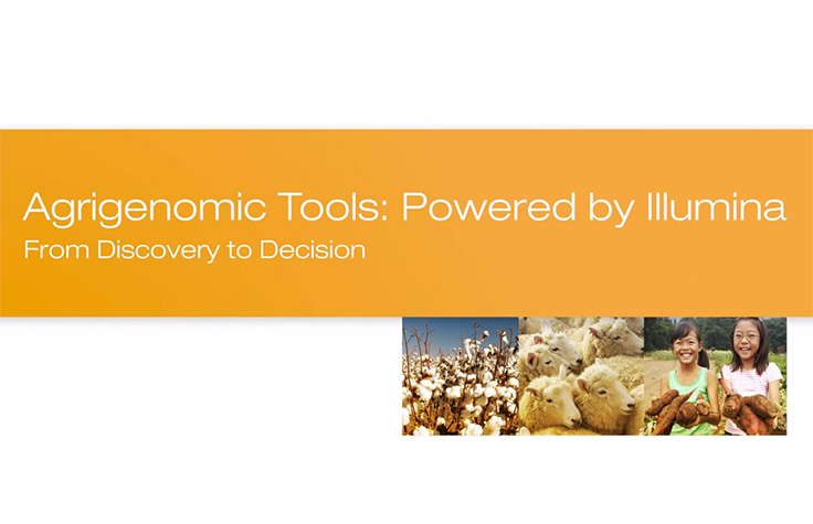 Agrigenomic Tools: From Discovery to Decision
