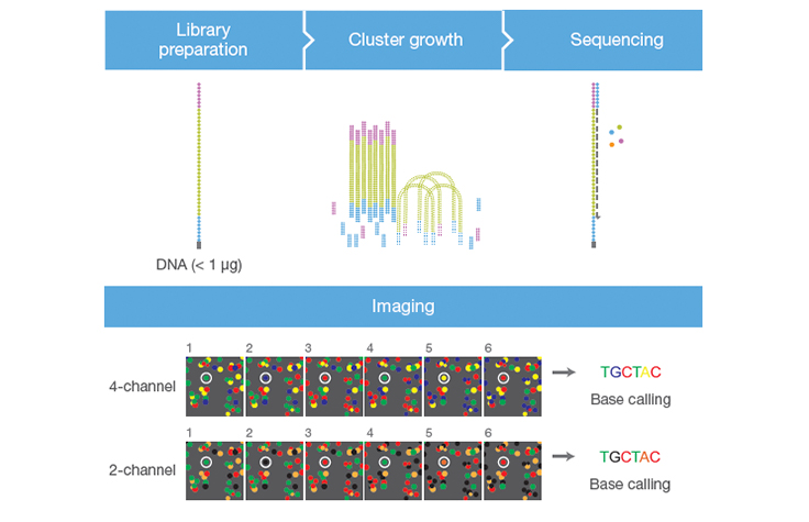 Faster Sequencing and Data Processing Times
