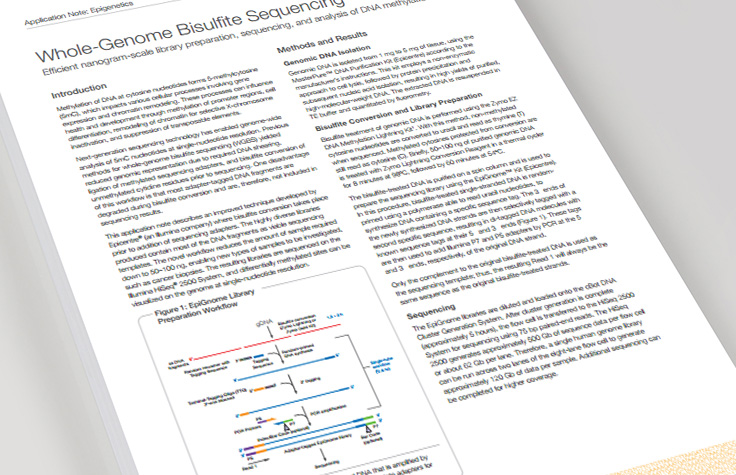 Whole-Genome Bisulfite Sequencing Library Prep