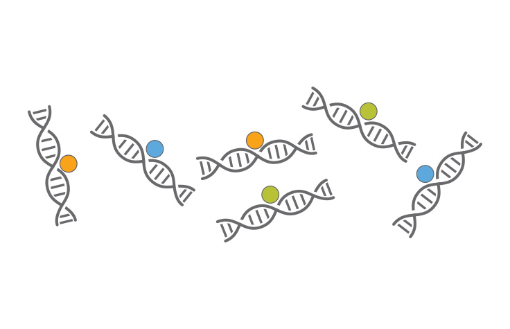 Unbiased Investigation of Epigenetic Patterns