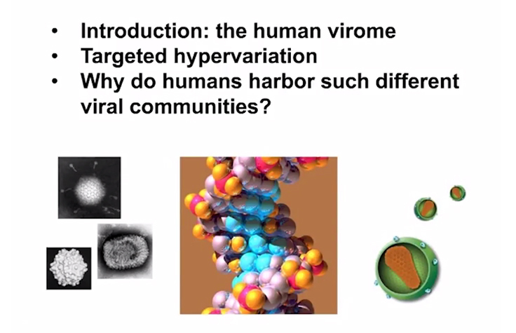 Composition and Dynamics of the Human Gut Virome<