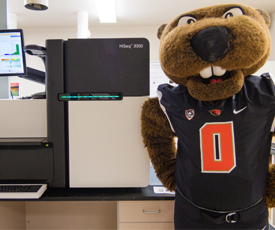 Oregon State University to Sequence Mascot's DNA