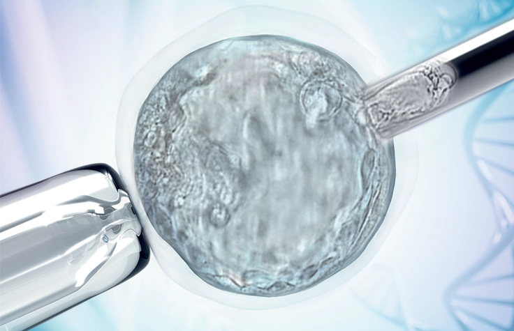 Preimplantation Genetics Technology