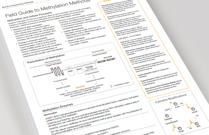 Field Guide to Methylation Methods