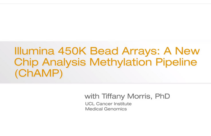 Illumina 450K BeadChip Arrays: A New Chip Analysis Methylation Pipeline (ChAMP)