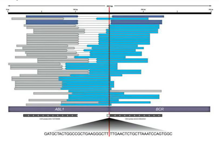 Transcriptome Analysis with NGS screenshot