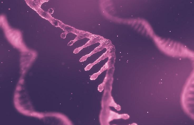 Illumina Stranded mRNA Prep